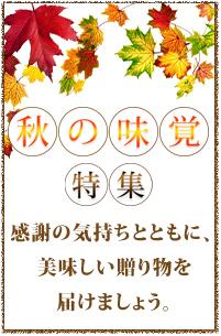 秋の味覚特集